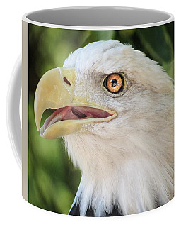 Coffee Mug featuring the photograph American Bald Eagle Portrait - Bright Eye by Patti Deters