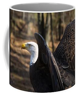 Bald Eagle Preparing For Flight Coffee Mug by Chris Flees