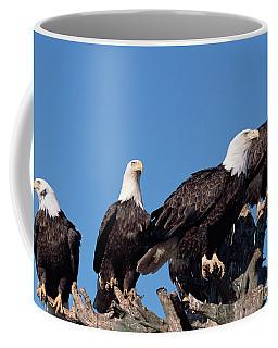 Bald Eagles Quartet Coffee Mug