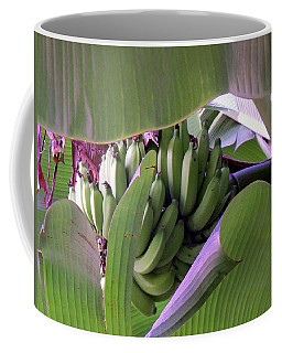 Banana Leaf Curtain Coffee Mug