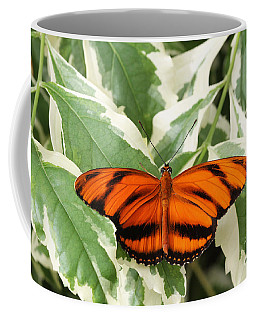 Banded Orange Longwing Butterfly Coffee Mug by Judy Whitton