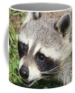 Bandit Coffee Mug by Tiffany Erdman