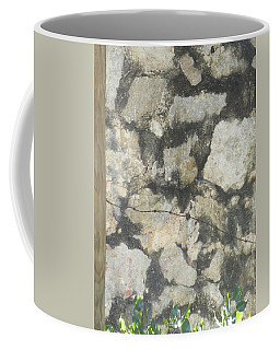 Coffee Mug featuring the photograph Barbed And Dangerous  by Brian Boyle