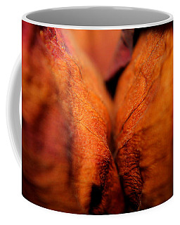 Coffee Mug featuring the photograph Barely Touching by Viviana  Nadowski