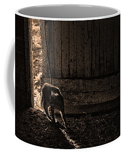 Barn Cat Coffee Mug