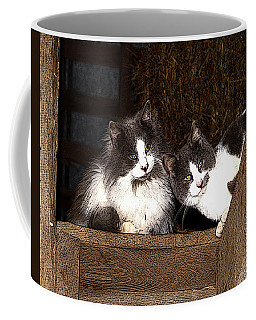 Barn Cats Coffee Mug by TnBackroadsPhotos