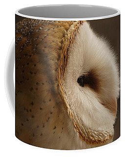 Barn Owl 3 Coffee Mug by Ernie Echols