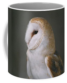 Coffee Mug featuring the photograph Barn Owl by David Porteus