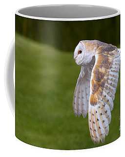 Coffee Mug featuring the photograph Barn Owl In Flight by Nick  Biemans