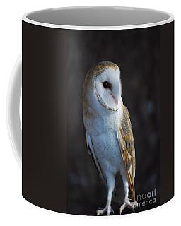 Barn Owl Coffee Mug by Sharon Elliott