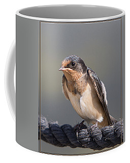 Coffee Mug featuring the photograph Barn Swallow On Rope I by Patti Deters