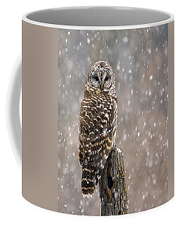 Barred Owl In A New England Snow Storm Coffee Mug