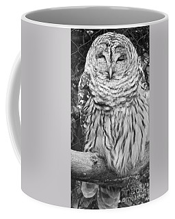 Coffee Mug featuring the photograph Barred Owl In Black And White by John Telfer
