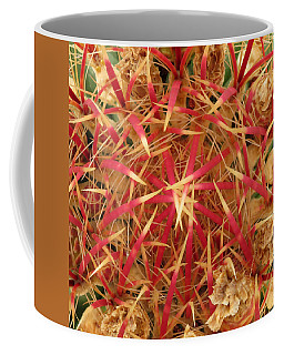 Coffee Mug featuring the photograph Barrel Cactus by Laurel Powell
