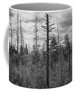 Barren Trees Of Maine Bw Coffee Mug