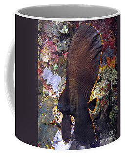 Coffee Mug featuring the photograph Bat Fish by Sergey Lukashin