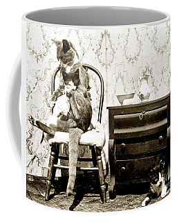 Coffee Mug featuring the photograph Bath Time For Kitty Circa 1900 Historical Photos by California Views Mr Pat Hathaway Archives