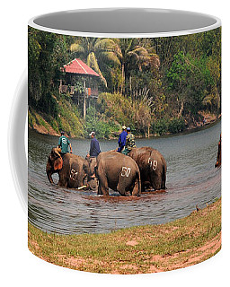 Coffee Mug featuring the photograph Bath Time by Vivian Christopher