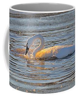 Bathing In Sunlight Coffee Mug