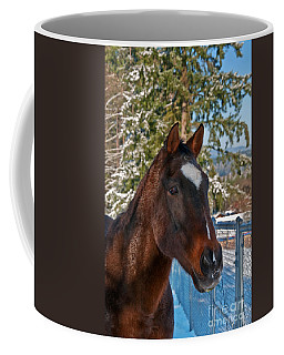 Bay Thoroughbred Horse Closeup In Snow Art Prints Coffee Mug by Valerie Garner