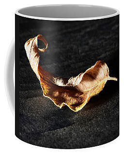 Coffee Mug featuring the photograph Be Still With Yourself by Lauren Radke