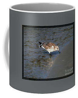Beach Beauty Coffee Mug