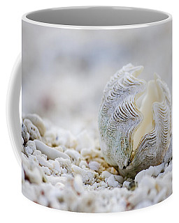 Beach Clam Coffee Mug