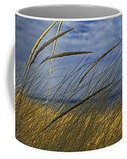 Beach Grass On A Sand Dune At Glen Arbor Michigan Coffee Mug