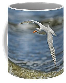 Beach Tern Coffee Mug