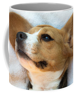 Beagles Dreams Coffee Mug by Eti Reid