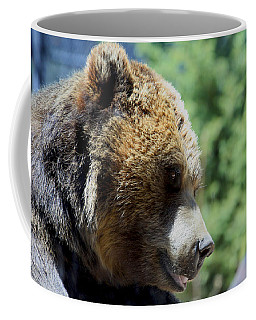 Bear Coffee Mug by Chris Thomas