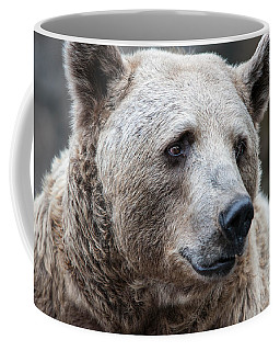 Bear Necessities Coffee Mug