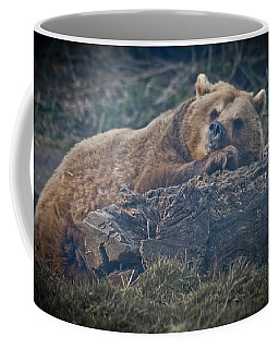 Bear On A Log Coffee Mug