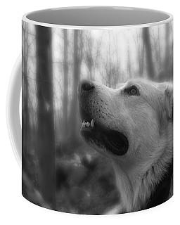 Bear Tooth Not Camera Shy Coffee Mug