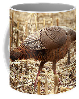 Bearded Wild Turkey Hen Coffee Mug