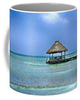 Beautiful Belize Coffee Mug