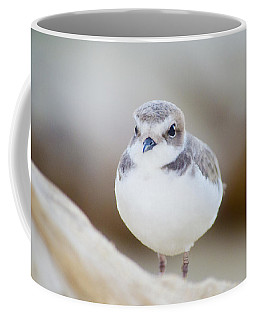 Beautiful Bird Coffee Mug