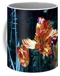 Coffee Mug featuring the photograph Gorgeous Tulip by Phyllis Kaltenbach