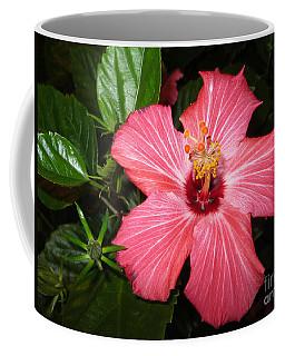 Beautiful Hibiscus Coffee Mug