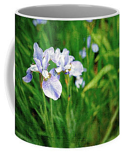 Beautiful Louisiana Hybrid Iris Coffee Mug by Marianne Campolongo