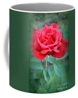 Beautiful Morning Rose  Coffee Mug
