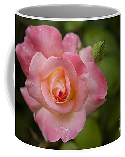Shades Of Pink And Green Coffee Mug by David Millenheft