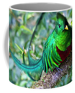Beautiful Quetzal 4 Coffee Mug