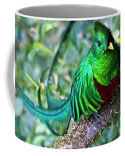 Beautiful Quetzal 4 Coffee Mug by Heiko Koehrer-Wagner