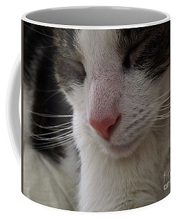 Coffee Mug featuring the photograph Beautiful Slumber by Robyn King