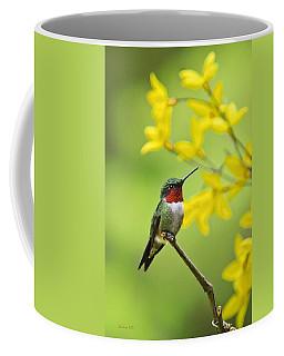 Beautiful Summer Hummer Coffee Mug