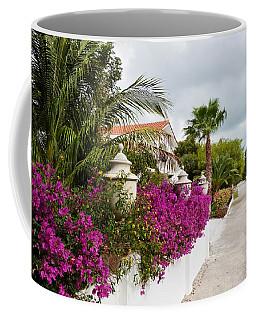 Coffee Mug featuring the photograph Beautiful Walk by Amar Sheow