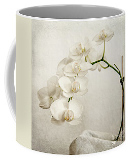 Beautiful White Orchid II Coffee Mug