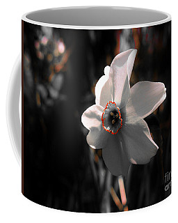 Coffee Mug featuring the photograph Beauty In The Woods by Sherman Perry