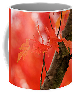 Coffee Mug featuring the photograph Beauty Of Red by Viviana  Nadowski